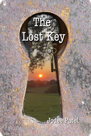 Lost key book image